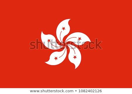 Flag of Hongkong Stock photo © creisinger