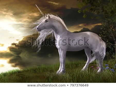white horse in the grass   3d render stock photo © elenarts