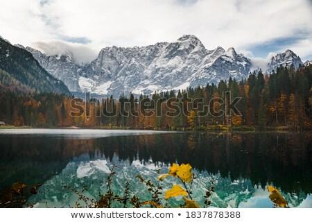 Tó olasz Alpok kristály víz égbolt Stock fotó © tommyandone