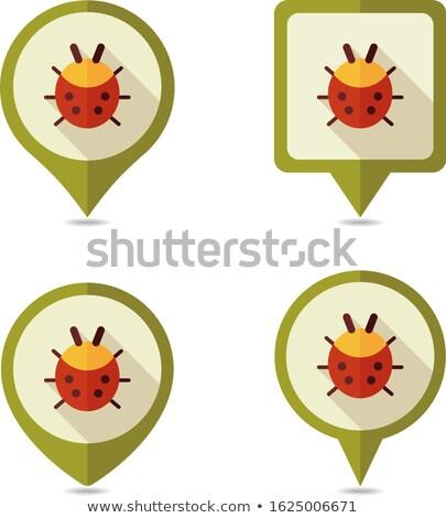 Térkép katicabogár ikon vektor háttér felirat Stock fotó © aliaksandra