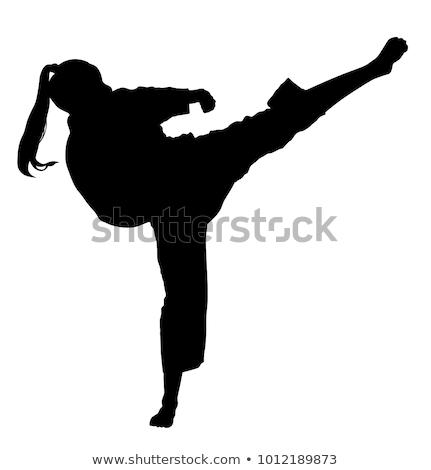 karate · siluet · vektör · görüntü · yalıtılmış · beyaz - stok fotoğraf © Istanbul2009