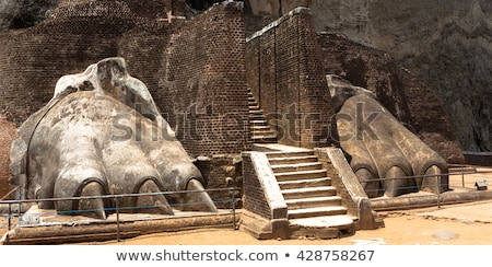 asian · tuin · steen · trappenhuis · hout - stockfoto © mikko