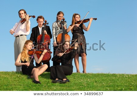 Six violinists sit on  grass and play Stock photo © Paha_L