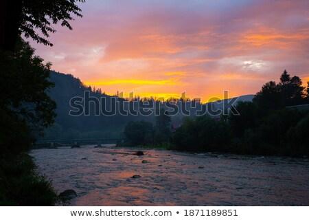 campo · erba · perfetto · tramonto · primavera · legno - foto d'archivio © tetkoren