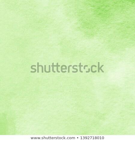 white paper, light green , paint Stock photo © dmitroza