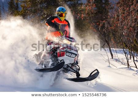 交通 アイコン 男 冬 スキー シルエット ストックフォト © Twinkieartcat