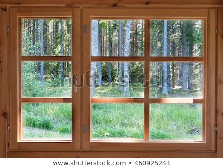 An open wooden window Stock photo © bluering