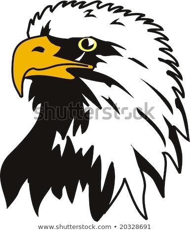 Stock photo: Air head vector illustration clip-art image eps