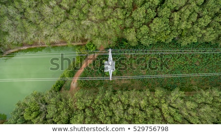 Aerial view of electricity power substation plant and pylons Stock photo © stevanovicigor