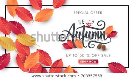 Stock fotó: Vector Autumn Label