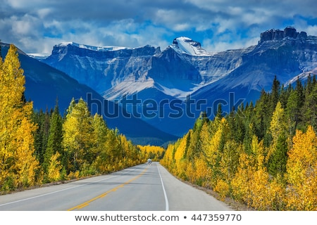 Autumn Landscape with birch forest and mountain range Stock photo © Kotenko