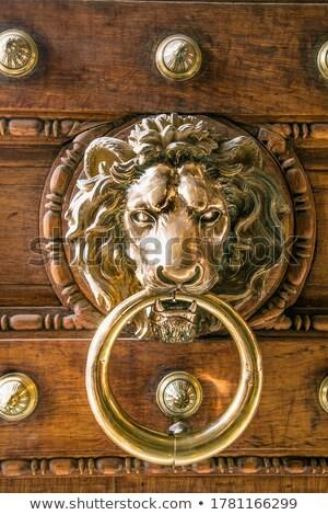 Oude Italiaans bronzen leeuw houten bruin Stockfoto © marylooo