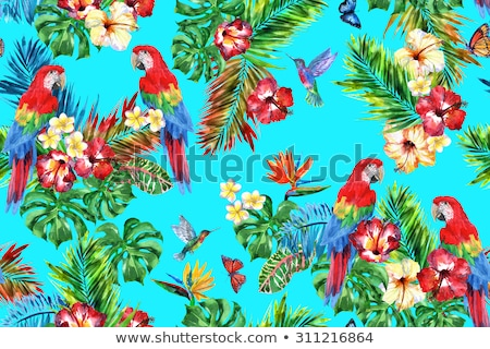 Summer background with red parrot Stock photo © Artspace
