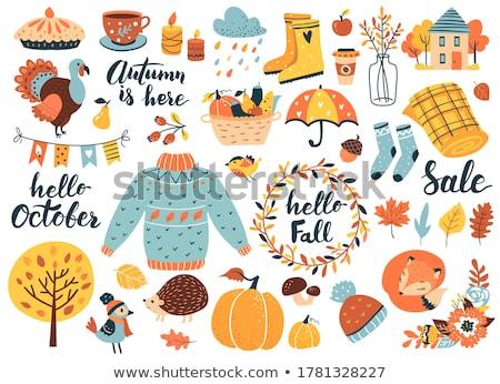 Cartoon cute doodles hand drawn autumn illustration Stock photo © balabolka