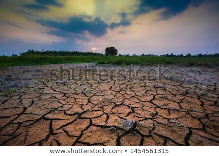 cracked dry brown soil background global warming effect stock photo © galitskaya