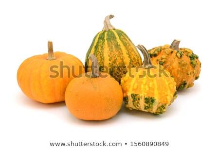 Cinco naranja decorativo formas acción de gracias decoración Foto stock © sarahdoow