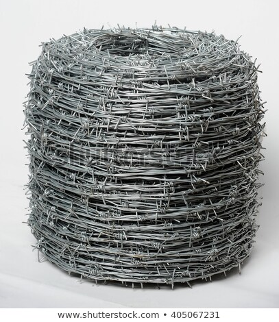 Tangled hank of metal barbed wire on white Stock photo © evgeny89