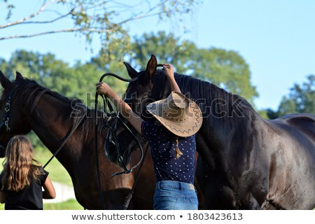 The girl with a horse in the winter on a hippodrome.  Stock photo © cookelma