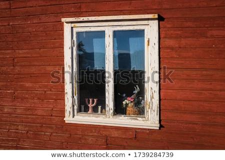 Some broken windows Stock photo © DedMorozz