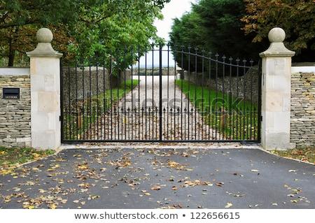 古い セキュリティ ゲート 鋼 ドア 赤 ストックフォト © bobkeenan