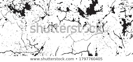 Crackle Stock photo © Stocksnapper