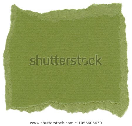 Fiber Paper Texture - Islamic Green stock photo © eldadcarin