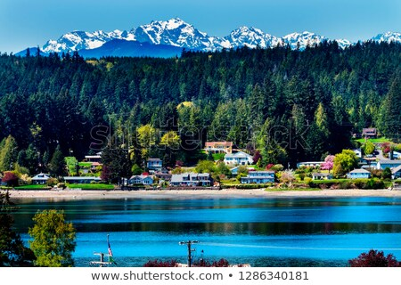 Poulsbo Bainbridge Island Puget Sound Snow Mountains Olympic Nat Stock photo © billperry