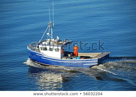 ストックフォト: 小 · 釣り · ボート · 港 · かわいい · 水