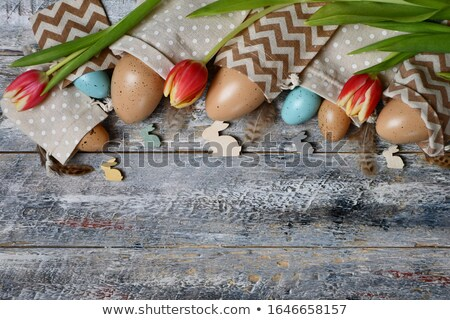 チューリップ 青 グレー 黒 花 ストックフォト © phila54