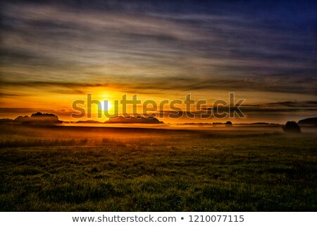 Tranquil grassland at sunrise Stock photo © Juhku