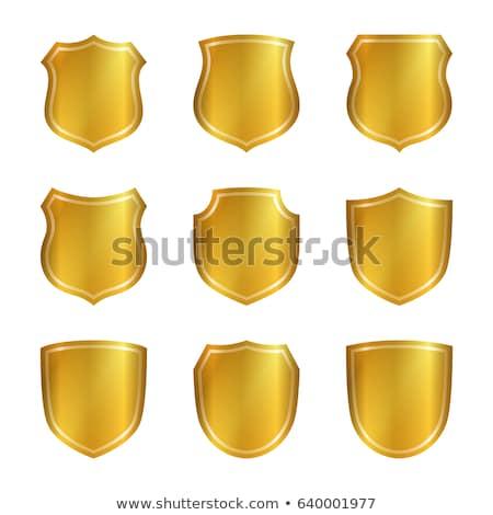 Beschermd gouden vector icon ontwerp zwarte Stockfoto © rizwanali3d