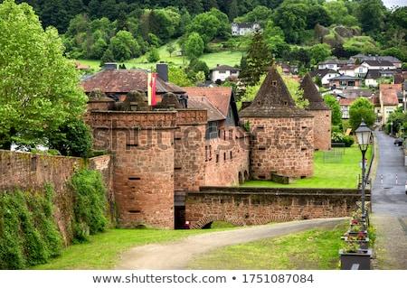 old city wall in buedingen stock photo © meinzahn