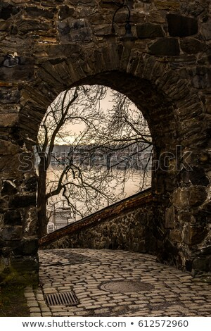 Vista medieval fortaleza castillo Oslo Noruega Foto stock © vladacanon