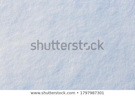 Sneeuw oppervlak textuur oude Stockfoto © Onyshchenko