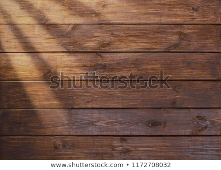 Hardwood flooring surface top view Stock photo © stevanovicigor