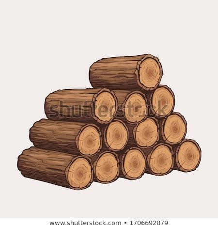 ağaç · yakacak · odun · beyaz · örnek · doğa · arka · plan - stok fotoğraf © rastudio
