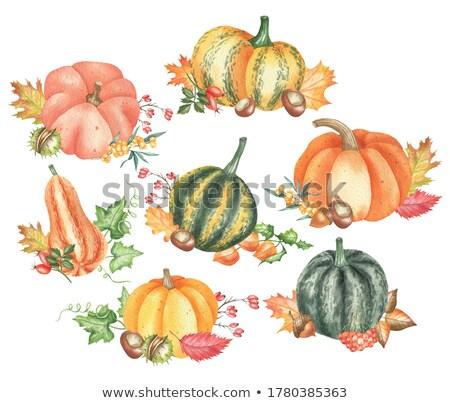 カボチャ 装飾された 葉 表示 オレンジ ストックフォト © dash