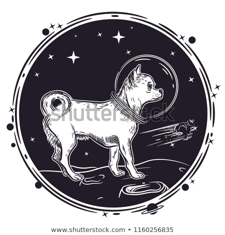Dog astronaut exploring space Stock photo © colematt