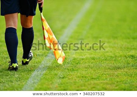 Futball döntőbíró nő gyönyörű tart labda Stock fotó © keeweeboy