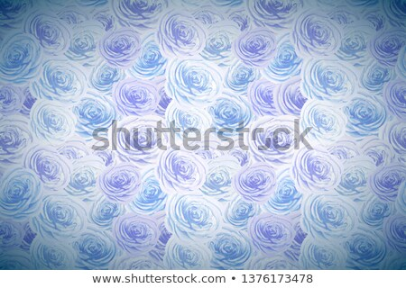 Kék fehér virágok széles részletes fényes Stock fotó © evgeny89