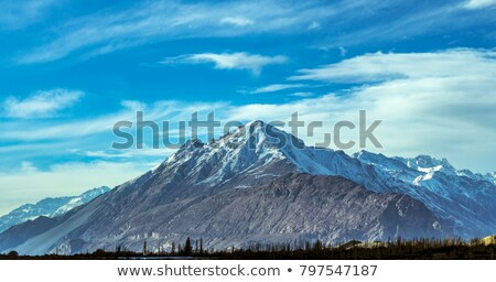 Himalayan landscape in Himalayas, India Stock photo © dmitry_rukhlenko