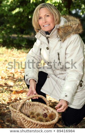 mature woman picking chestnuts stock photo © photography33