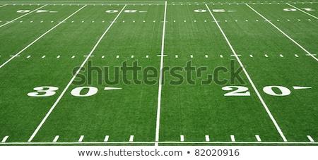 Football field with marking. Stock photo © borysshevchuk
