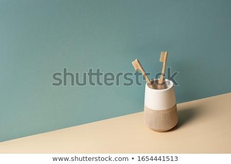 diş · fırçası · koruma · fotoğrafçılık · yatay · yakın · çekim - stok fotoğraf © karandaev