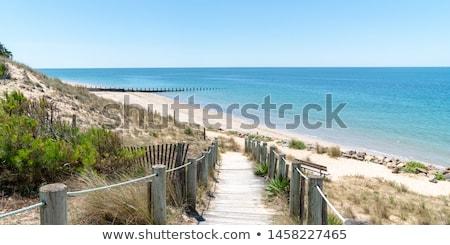 Atlantic coast Stock photo © ajlber