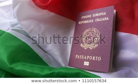 italiano · passaporte · americano · moeda - foto stock © Goldcoinz