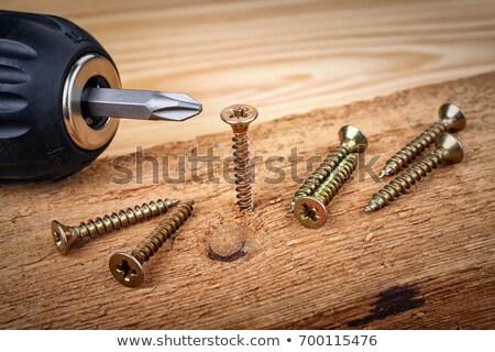 Screw in Wood Stock photo © chrisdorney