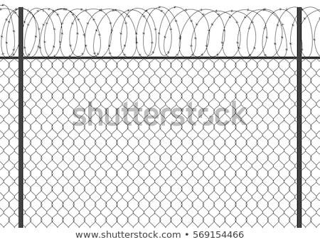 háló · kerítés · szögesdrót · kék · ég · háttér · fém - stock fotó © mikko