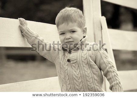 2 years old Baby boy on the a white picket fence beside the hors Stock photo © vladacanon