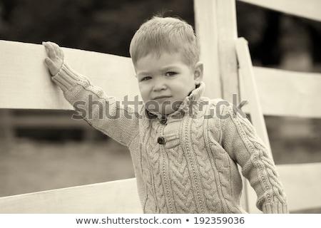 мало · мальчика · забор · Постоянный · только · древесины - Сток-фото © vladacanon